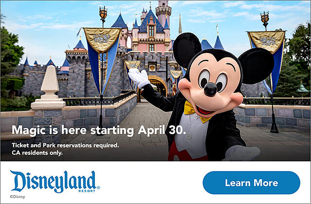 Disneyland banner with a learn more-1-1